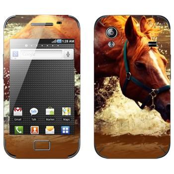 Виниловая наклейка «Лошадь в реке» на телефон Samsung Galaxy Ace