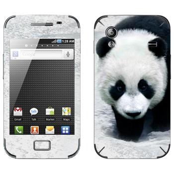Виниловая наклейка «Панда в снегах» на телефон Samsung Galaxy Ace