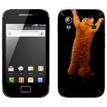 Виниловая наклейка «Рыжий кот стоит на двух лапах» на телефон Samsung Galaxy Ace