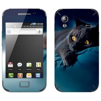 Виниловая наклейка «Серая кошка» на телефон Samsung Galaxy Ace