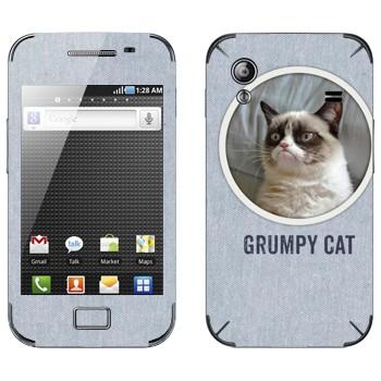 Виниловая наклейка «Сердитый кот фото» на телефон Samsung Galaxy Ace