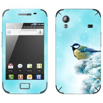 Виниловая наклейка «Синичка на ёлке» на телефон Samsung Galaxy Ace