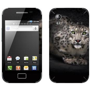 Виниловая наклейка «Снежный барс» на телефон Samsung Galaxy Ace