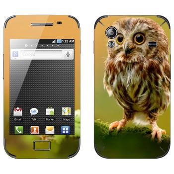Виниловая наклейка «Сова в лесу» на телефон Samsung Galaxy Ace