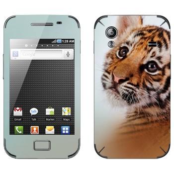 Виниловая наклейка «Тигренок» на телефон Samsung Galaxy Ace