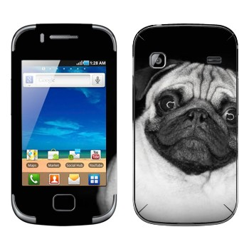 Samsung Galaxy Gio