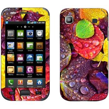 Виниловая наклейка «Осенние листья» на телефон Samsung Galaxy S