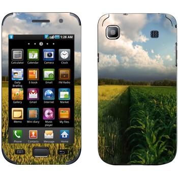 Виниловая наклейка «Поле кукурузы и небо» на телефон Samsung Galaxy S